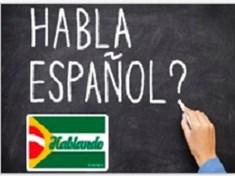 Espanhol On-line - Nível 1